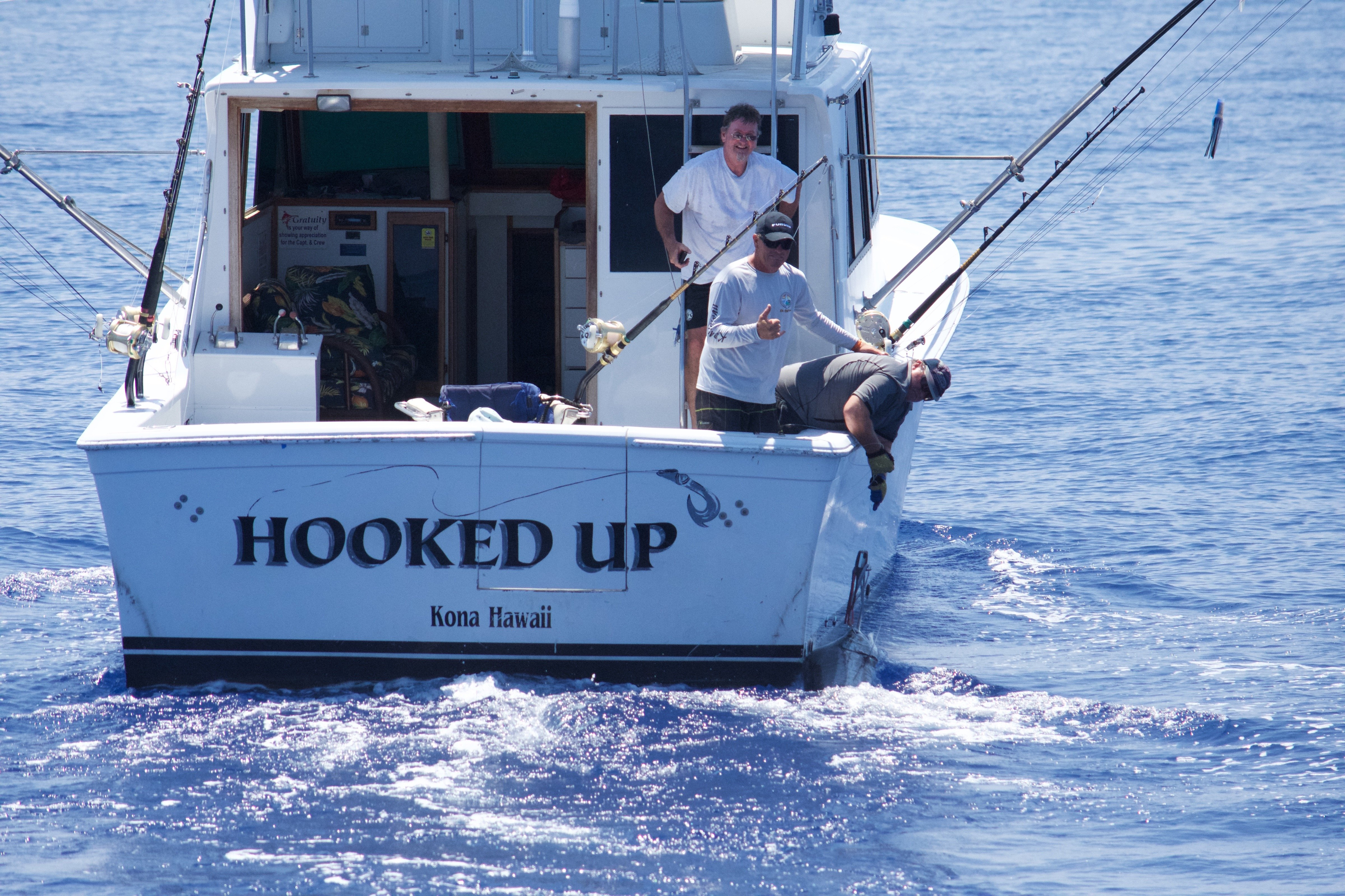 20 blue marlin fishing kona hawaii hooked up for Kona hawaii fishing