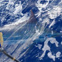 kona charter fishing hawaii