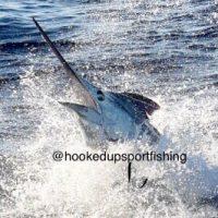 fishing kona charter