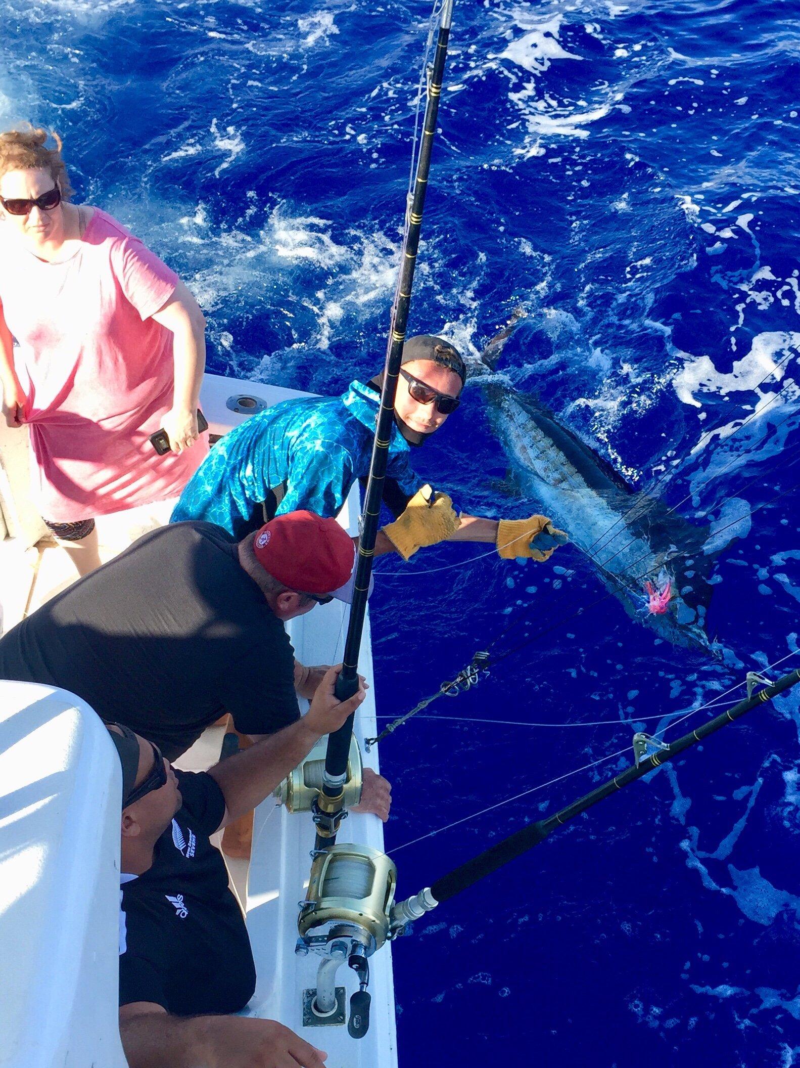 Blue marlin fishing big island