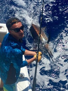Blue marlin charter fishing kona Hawaii
