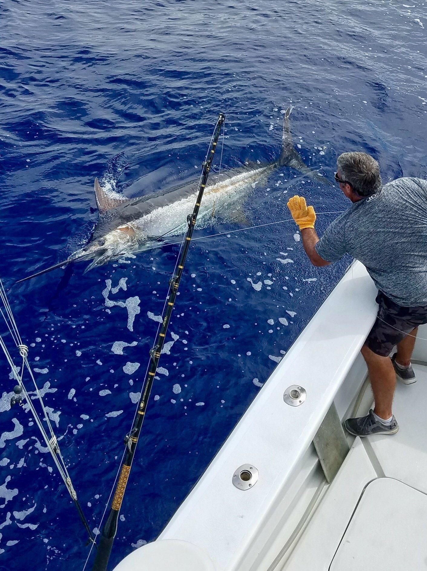 Deep sea fishing Kona