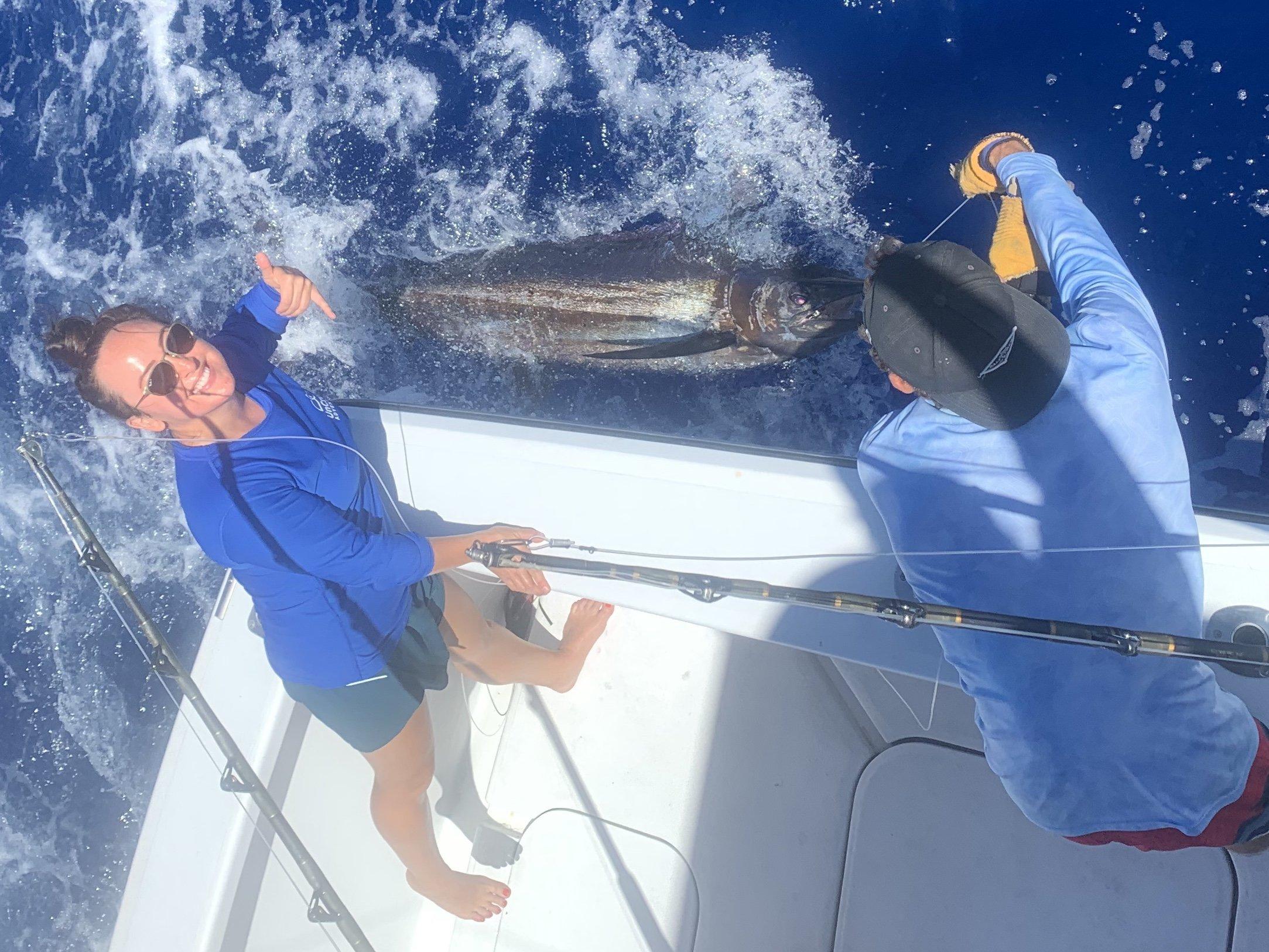 Blue marlin beside the boat